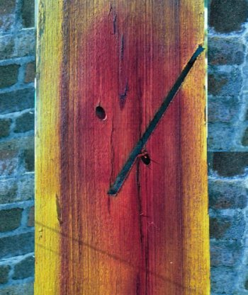 A colourmetric indicator is sprayed on a cross section of wood.