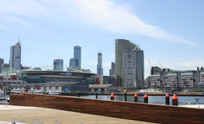 Spotted Gum at Melbourne Docklands