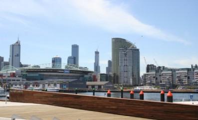 Spotted Gum at Melbourne Docklands