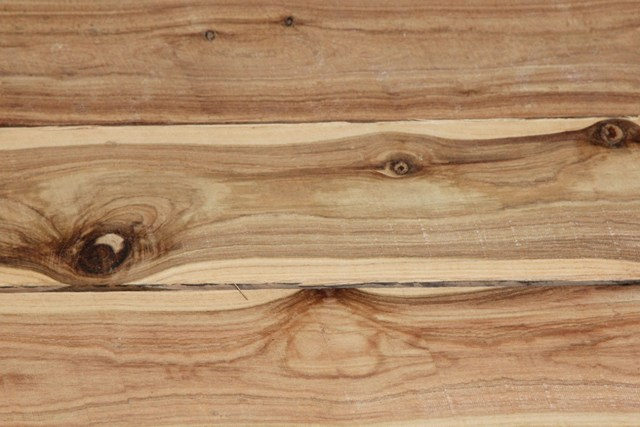 Cypress Pine with Sapwood